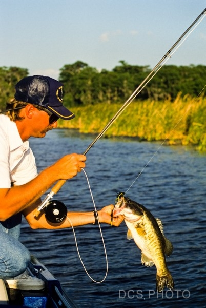 Dale spartas photo dcs photo inc for Fly fishing for largemouth bass